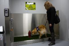 Terminal 4 indoor animal relief in gate range  B1-B14