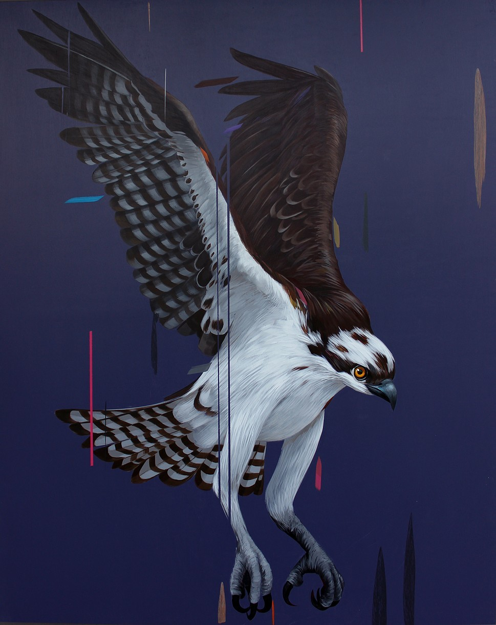 Osprey, acrylic on panel 30 x 24,  2013